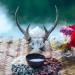 Rituales y costumbres vikingas